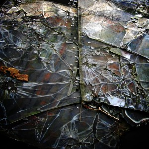 shattered glass by shadows within